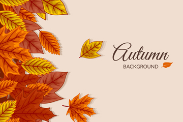 彩色秋季落叶矢量素材