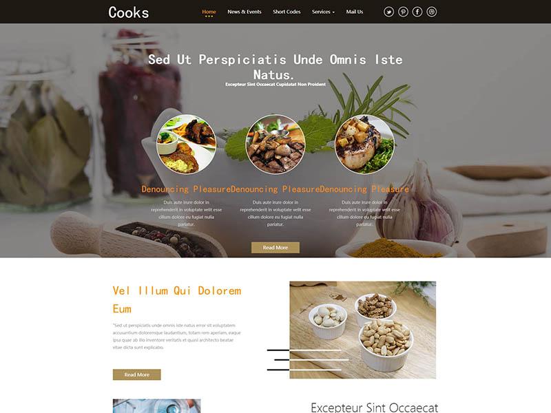 五星级酒店厨师网站模板-上海网站建设|网站建设专家|免费素材下载-综讯科技